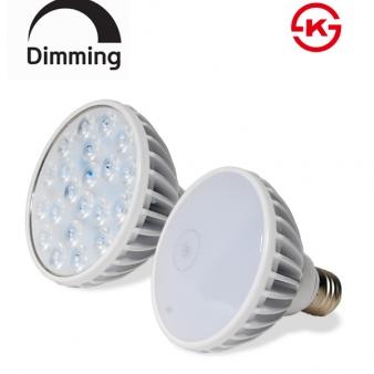 LED PAR30 15W 집중형/확산형 [조광형]
